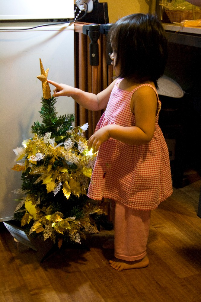 The very first time we set up the Christmas Tree, Janna was 2 years old.